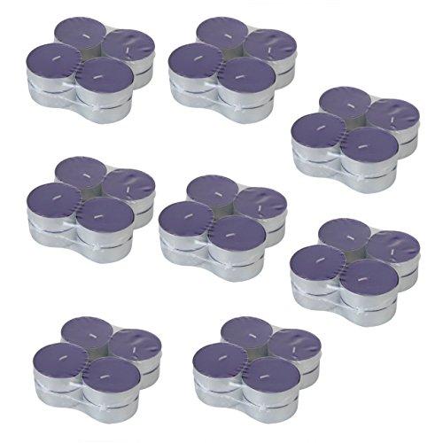AiO-S - OK Maxi Duftkerzen XXL Teelichter 64 Stk Windlichter Kerzen Orchideeduft Laternenlicht