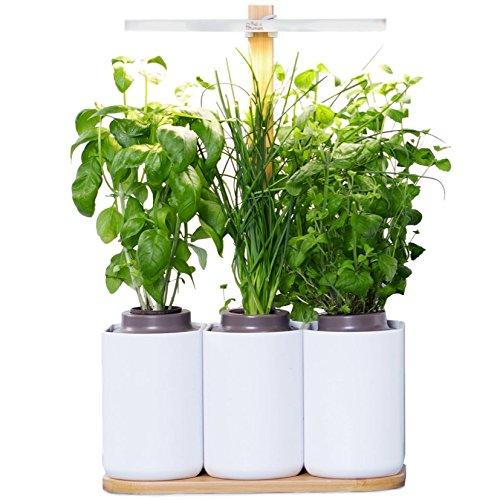 Lilo Ihr smarter Heimgarten ❃ lassen Sie Ihre eigenen frischen Kräuter wachsen ganzjährig ❃ biologisch