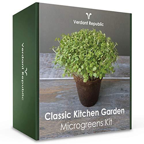Pflanzen Sie Ihr eigenes SUPERFOOD – CLASSIC KITCHEN GARDEN MICROGREENS SET  Anzuchtset für Sprossen  leicht zu züchtende Gemüse Kräuter  Ernte in 2 Wochen  Perfektes Geschenk