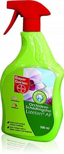 Bayer Schädlingsbekämpfung Orchideen-Schädlingsfrei Lizetan AF 500 ml mehrfarbig