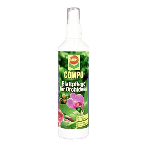 COMPO Blattpflege für alle Orchideenarten Sprühflasche 250 ml