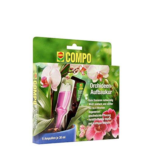 COMPO Orchideen-Aufbaukur für alle Orchideen-Arten 4 Wochen Langzeitwirkung 5 Ampullen je 30 ml