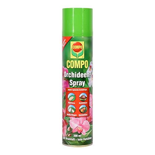 COMPO Orchideen-Spray Bekämpfung von Schädlingen an Orchideen und Zierpflanzen Anwendungsfertig 300 ml