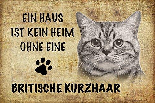 Schatzmix EIN Haus ist kein heim ohne eine Britische Kurzhaar Katze Metal Sign deko Schild Blech Garten