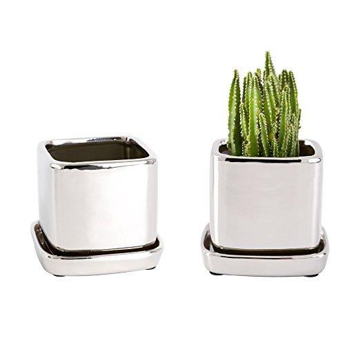 Mkouo 2 Stück Keramik Sukkulenten Töpfe Mini Blumentöpfe Kaktus Pflanze Töpfe mit Quadrat Mirror Silber Ø 83 cm Höhe 83 cm