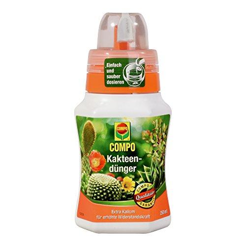 COMPO Kakteendünger für alle Kakteen und dickblättrigen Pflanzen Sukkulenten Spezial-Flüssigdünger mit extra Kalium 250 ml