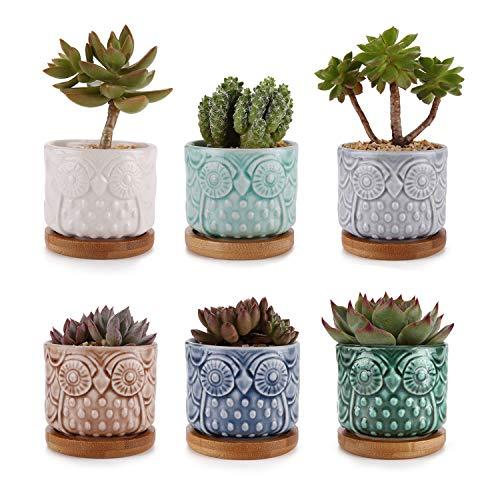 MuciHom Sukkulenten Übertöpfe Töpfe Eule Keramik Eis-Crack Serie Packung mit 6 Kaktus Container Pflanzer Körbe Kästen Kübel Desktop Dekoration Geburtstag Hochzeit