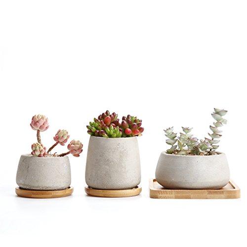 Rachels Zement Serie Sukkulenten Töpfe Kaktus Pflanze Töpfe Mini Blumentöpfe 3 Stücke Set mit Untersetzer