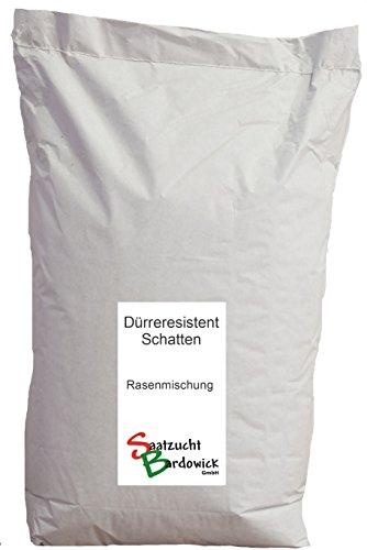 10kg für ca 300 m² Schattenrasen dürreresistent Rasensamen Qualität Rasen Rasensaat Rasenmischung