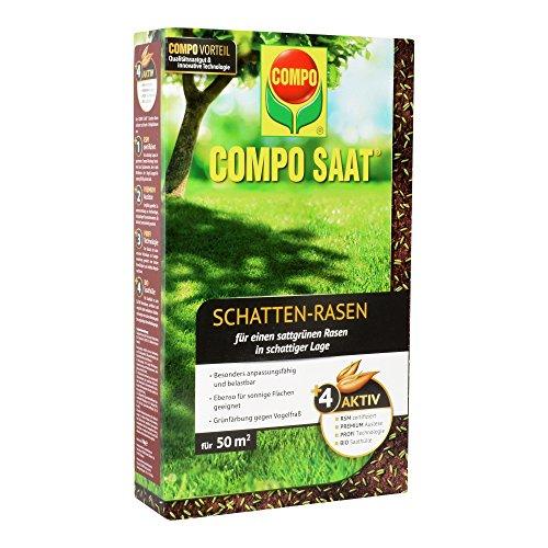 COMPO SAAT Schatten-Rasen Spezielle Rasensaat-Mischung  mit wirkaktivem Keimbeschleuniger 1 kg 50 m²