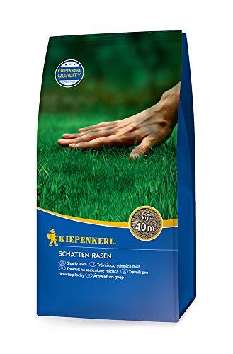 Rasensamen - Schatten-Rasen 1 kg von Kiepenkerl