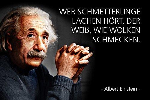 Schatzmix Albert Einstein - wer Schmetterlinge Lachen hört der weiß wie Wolken schmecken Metal Sign deko Schild Blech Garten