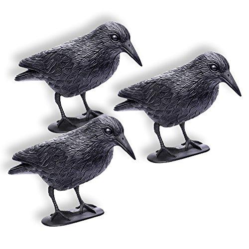 Schramm 3 Stück Sitzende Krähen schwarz Taubenschreck Vogelschreck Kunststoff Rabe Taubenabwehr Vogelabwehr 3er Set Vogelscheuche