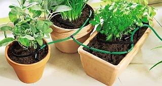 Bewässerungs System für Balkon Pflanzen Wasserspender Blumen
