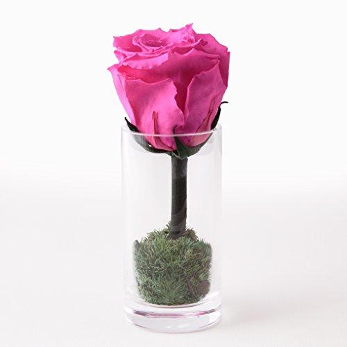 Blumen-Strauß mit Glas-Vase aus echten lang haltenden Rosen – die haltbare Rose 3 Jahre von ROSEMARIE SCHULZ GmbH Heidelberg Höhe 10cm Rosa