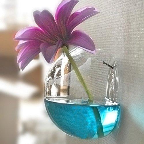 Rosepoem Glas Blumen Pflanzer Vase Wandbehang Pflanze Terrarien Glas Wasserpflanze Pflanzer Hausgarten Party Wall Decor nicht enthalten weiße kleine Nagel