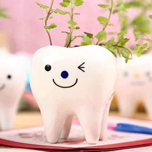 HUAPEN 1 stücke Zahnform Weiß Smiley Keramik Blumen Topf Pflanzer Zähne Modell Mini Desktop Topf Kreative Geschenk-A