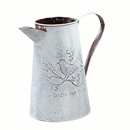 Blech-innaffiatura des Blume bloomma Dosen für Gießkanne Retro ° in Folie von Eisen Antik für Gartenmöbel A