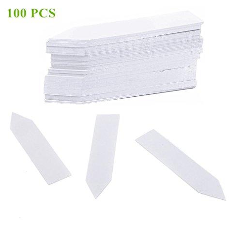 Qiorange 100Stk Mini Plastik Pflanzenstecker Stecketiketten Beschriften Pflanzschilder Schilder 10CM  2CM Sind Praktisch für Alle Gärtner 100 Pcs Weiß Type A
