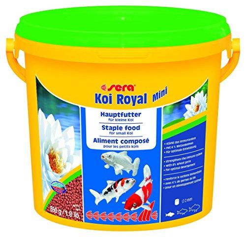 sera 07112 KOI ROYAL MINI 3800 ml - Hauptfutter für die optimale Entwicklung von Koi bis 12 cm