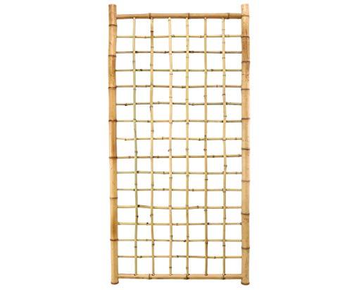 bambus-discountcom Bambus Rankgitter Ten New Line4 180x90cm Spalier aus 20 Bambusrohren Sichtschutzwand Sichtschutzelement Sichtschutz Gartenzaun Zaunelement Sichtschutzwände Gartenzäune
