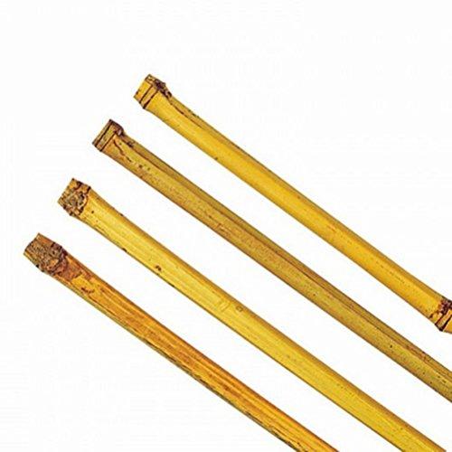 Bambusstäbe 150 - 180 cm Tonkinstäbe Rankhilfe Pflanzhilfe Pflanzstäbe 5 Stück Ø 18-21 mm x 180 cm