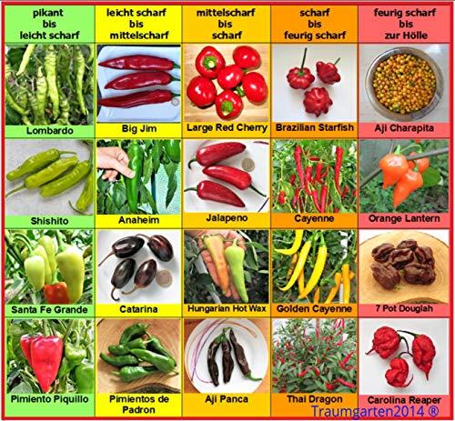 Chili Set 20 Sorten von pikant bis extrem scharf Chilisamen Set Mischung Samen aus aller Welt Peperoni Chilli