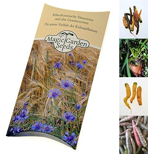 Saatgut Set Bunte Karotten 4 besondere alte Karottensorten als Samen zur Anzucht in hübscher Geschenk-Verpackung