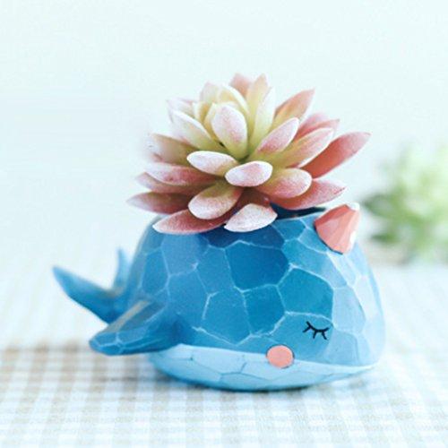 Gazechimp Harz Wal Form Blumentopf Blume Töpfe Kasten für Saftig Kaktus Pflanzen Bonsai Büro Tisch Garten Balkon Deko