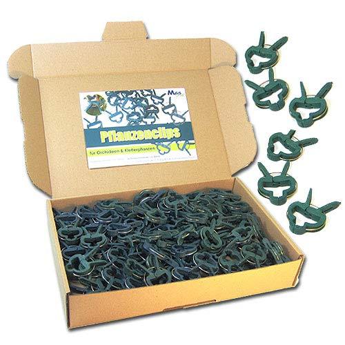 MGS SHOP Pflanzenclips 100 Stück stabile Clips Pflanzenklammern für kleine große Triebe Spaliere Rosenbögen Rankhilfen 100er-Set KLEIN